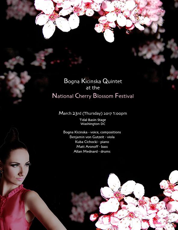 cherry blossom smaller 2